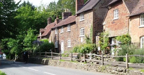 image of a row of old cottages called The Terrace
