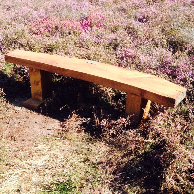 Thank you everyone who helped with the Hesworth Common Working Party
